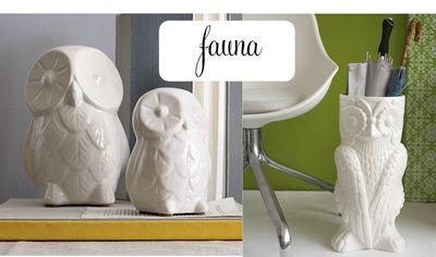 Fauna owls